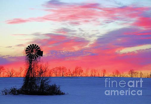 Morning Sunrise by Kristi Beers-Mason