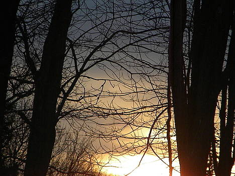 Morning Sunrise by Melissa Mendelson