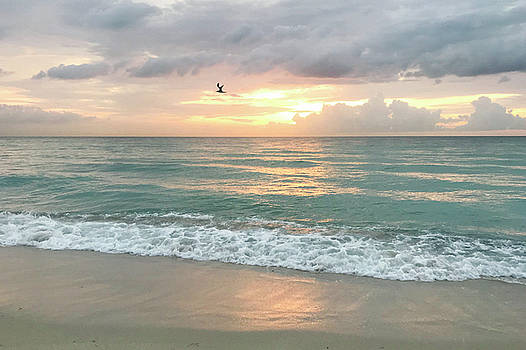 Morning Sunrise - Miami Beach by Art Block Collections