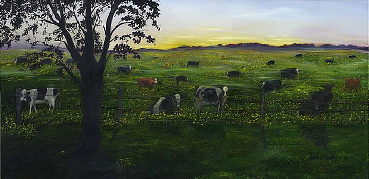 Morning Veil by Linda Clark