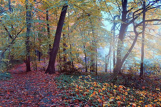 Morning Walk by John Rivera