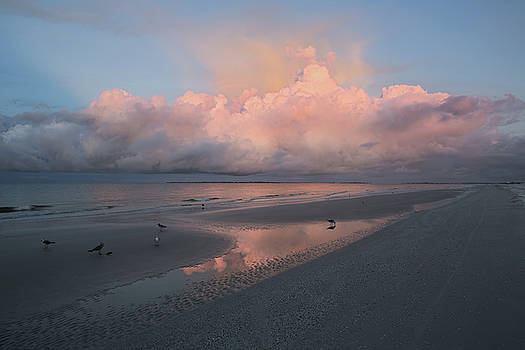 Morning Walk on the Beach by Kim Hojnacki