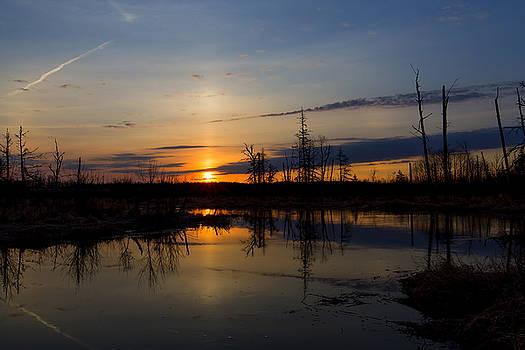 Morning Wilderness by Gary Smith