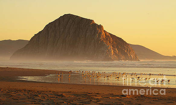 Morro Rock At Sunset by Max Allen