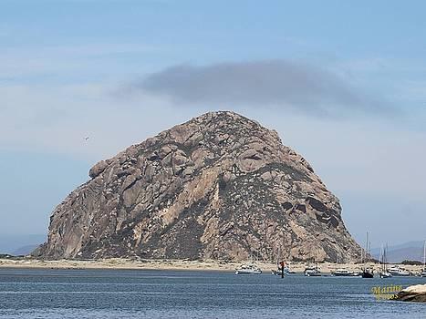 Gary Canant - Morro Rock