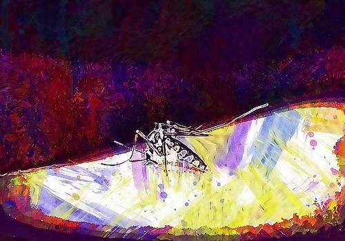 Mosquito Malaria Gnat Bite Insect  by PixBreak Art
