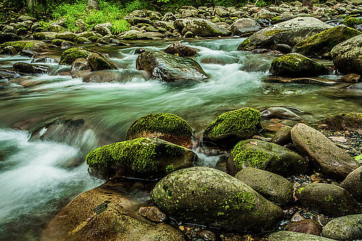 Moss Covered Rocks and Flowing Stream by Carol Mellema