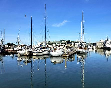 Moss Landing Harbor by Amelia Racca