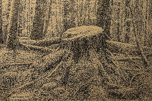 Terry Perham - Moss On The Stump