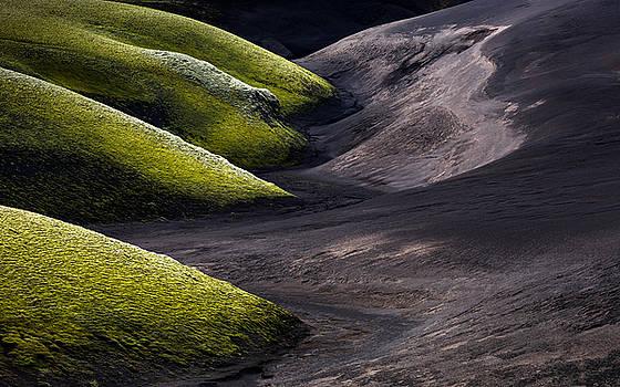 Moss Vs Sand by Arnar B Gudjonsson