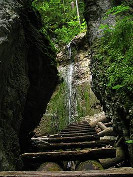 Moss waterfall by Jana Goode