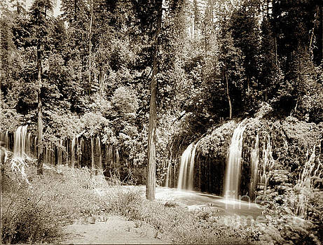 California Views Archives Mr Pat Hathaway Archives - Mossbrae Falls Shasta Springs Circa 1908