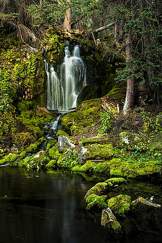 Mossy Falls by Joe Sparks