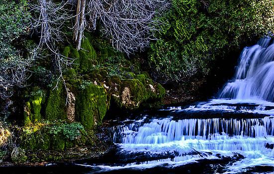 Mossy Falls by Ryan McIntyre