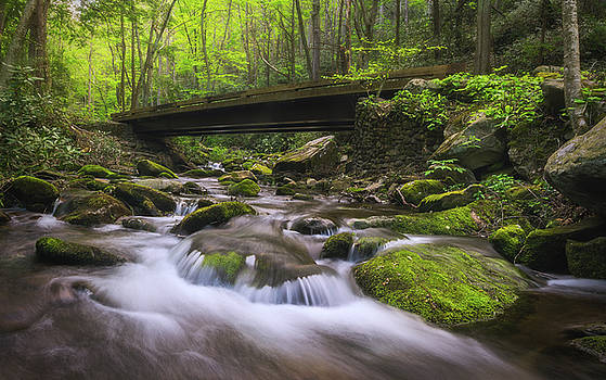 Mossy Haven by Dawnfire Photography