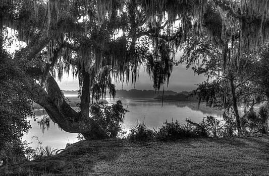 Mossy Oaks by BG Flanders