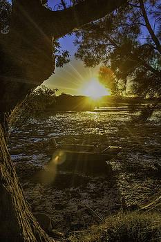 Mossy Point Dawn by Chris Hood