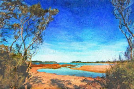 Mossy Vale Beach by Chris Hood