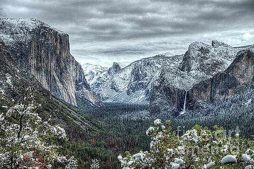 Wayne Moran - Most Beautiful Yosemite National Park Tunnel View