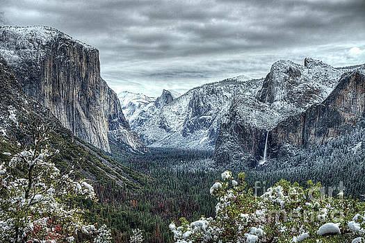 Most Beautiful Yosemite National Park Tunnel View by Wayne Moran