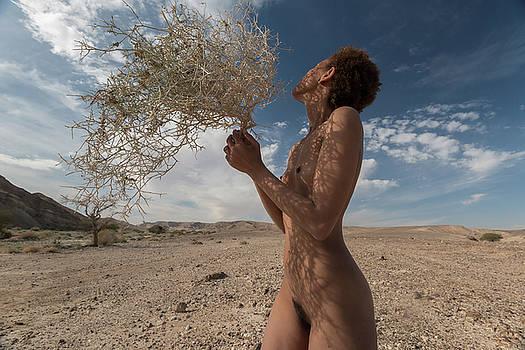 Mother Africa by Dejan Dizdar