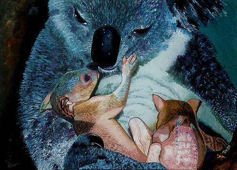 Mother Koala With Twins by Chris Degenhardt