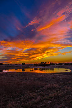 Mother Natures Paintbrush by Bob Marquis
