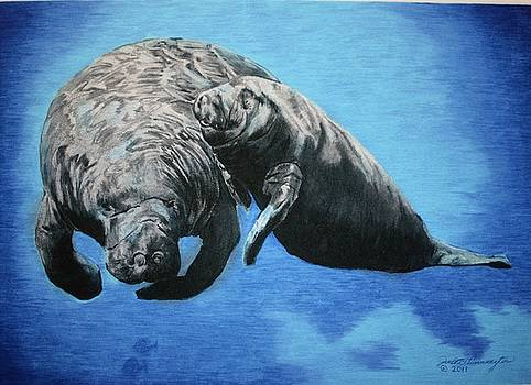 Mother Sea Cow with Calf by Judith Pennington