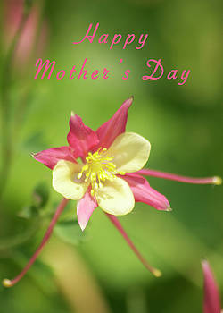 Michael Peychich - Mothers Day Card 5