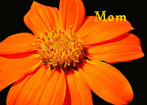 Mother's Day Card by Rosalie Scanlon
