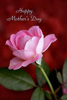 Mother's Day by Jim  Darnall