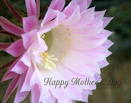 Mothers Day by Marna Edwards Flavell