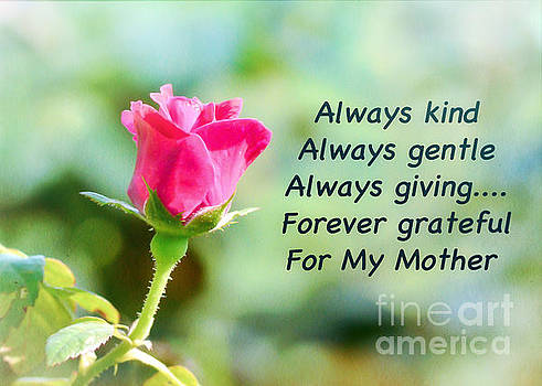 Mothers Day Rose by Kerri Farley