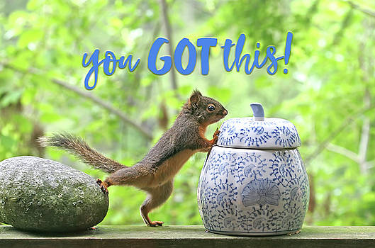 Peggy Collins - Motivational Squirrel - You Got This
