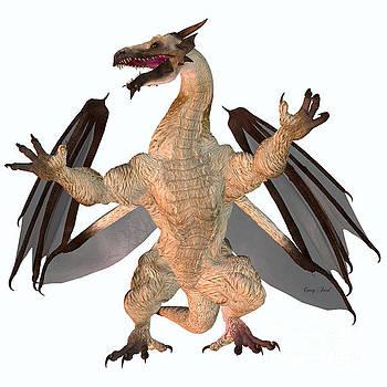Corey Ford - Motley Dragon