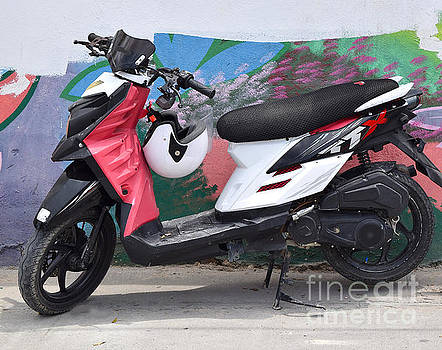 Motorbike  by Inessa Williams