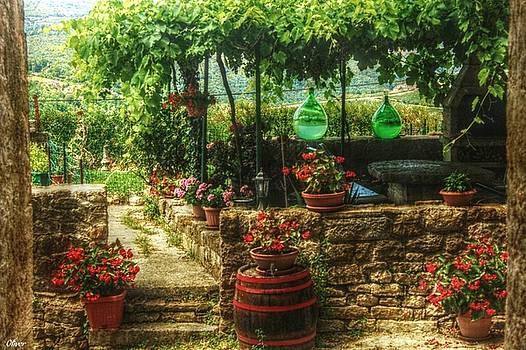 Motovun Garden by Bill Oliver
