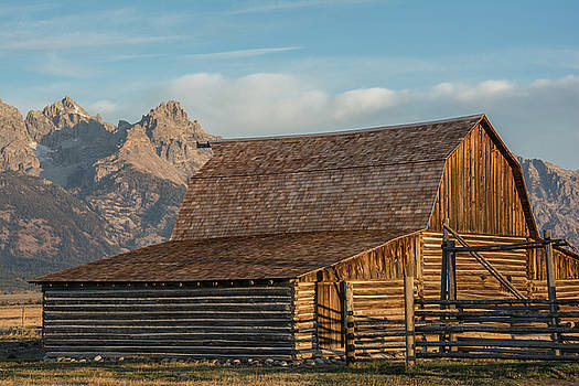 Moulton Homestead - Barn at Morning Light by Colleen Coccia