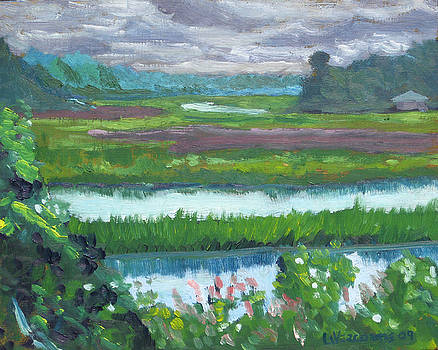 Moultrie Creek I by D T LaVercombe