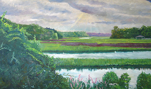 Moultrie Creek IV by D T LaVercombe