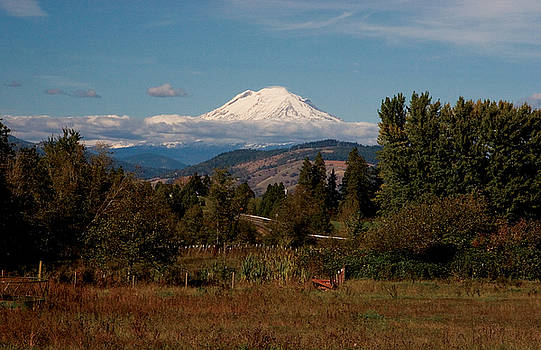 Mount Adams by Richard Ferguson