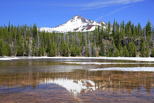 Mount Bachelor by Emily M Wilson