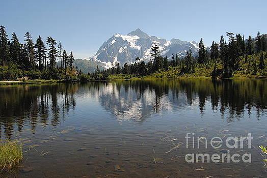 Mount Baker, Washington by Beth Erickson