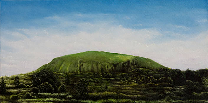 Joe Michelli - Mount Coolum