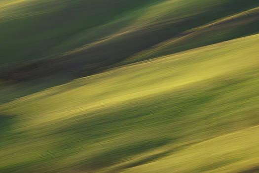 Mount Diablo - Impressions by Francesco Emanuele Carucci