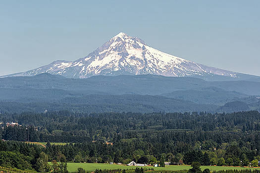 Mount Hood in the Summer by David Gn