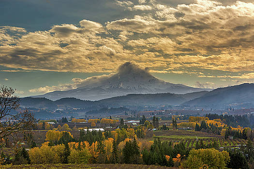 Mount Hood Over Farmland in Hood River in Fall by David Gn