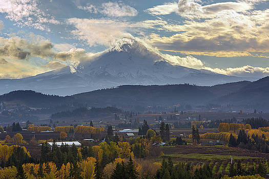 Mount Hood over Hood River Valley in Fall by David Gn
