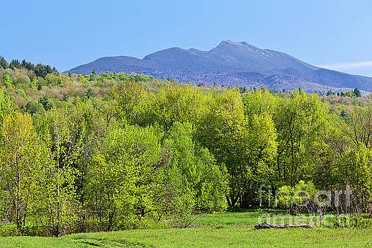 Mount Mansfield Spring Transition by Alan L Graham