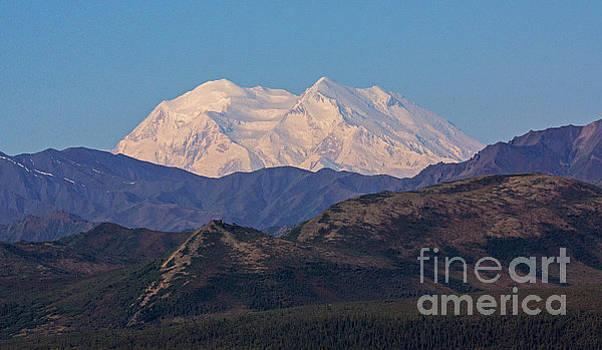 Mount McKinley by Robert Pilkington